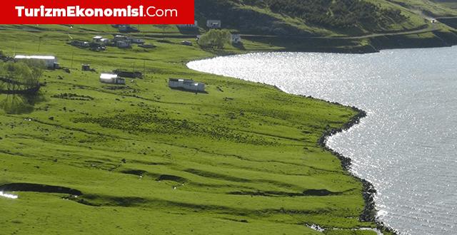 Çıldır Gölü, konaklayan göçmen kuşlarla dikkat çekiyor